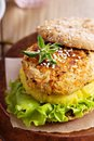 Rice and vegetables vegan burger