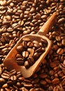 Rich brown fresh roasted coffee beans Royalty Free Stock Images