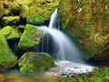Rich cascade on small mountain stream, water is running over green mossy boulders. Royalty Free Stock Photo