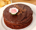 Rich Chocolate Cake Stock Photography