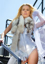 Rich woman with polar fox on a ladder Stock Images
