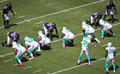 Richie incognito and jonathon martin side by side miami dolphin s offense before the snap suspension of for bullying Royalty Free Stock Photos