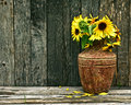 Richly toned sunflowers on wood. Stock Image