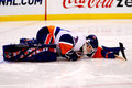 Rick DiPietro New York Islanders Stock Images