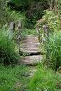 Rickety Garden Bridge