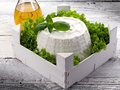 Ricotta with basil e lettuce Royalty Free Stock Images