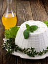 Ricotta with basil lettuce and myrtle Royalty Free Stock Photography