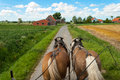 Ride through the flemish fields with horse and covered wagon Royalty Free Stock Image