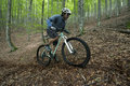 Rider in action at freestyle mountain bike session Royalty Free Stock Photos