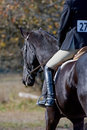 Rider at equestrian event Stock Images