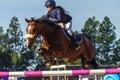 Rider girl horse jumping Royalty-vrije Stock Foto