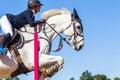 Rider girl horse jumping Royalty-vrije Stock Afbeeldingen