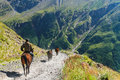 The rider goes on a horse in mountains Royalty Free Stock Photo