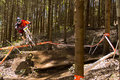 Rider at Greg Minaar Racing and Mongoose Downhill Stock Image
