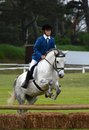 Rider jumping with horse a caucasian preteen female her over a jump on a working hunter course Royalty Free Stock Photos