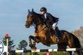 Rider woman horse jumping Arkivfoto