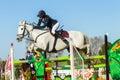 Rider woman horse jumping Stockfotos