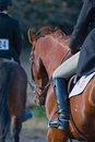Riders in equestrian event Stock Photography
