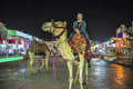 Riding a camel Royalty Free Stock Photos