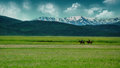 Riding in the first days of spring on eastern anatolia two peasants ride across plains near their village it s early springtime Royalty Free Stock Photography