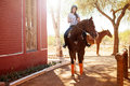 Riding a horse on a sunny day Stock Photography