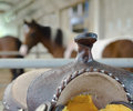 Riding saddle in the horse farm Stock Images