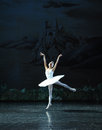 Riding the wind, there I would fly-ballet Swan Lake Royalty Free Stock Photo