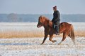 Riding in Winter Royalty Free Stock Photography