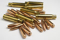Rifle bullets separated cases and tips Stock Photography