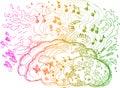 Right Brain hemisphere