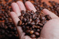 Right Hand Hold The Coffee Bean Royalty Free Stock Photo