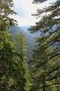 Rila mountain general view of borovets resort in bulgaria Royalty Free Stock Image