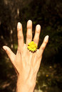 Ring flower little yellow dressed like a in a finger of a girl s hand Royalty Free Stock Photography