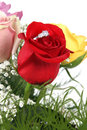 Ring in petals of red rose Royalty Free Stock Image