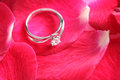Ring with red flower diamond rose petal Royalty Free Stock Image