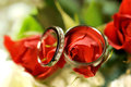 Rings on red roses closeup of wedding Royalty Free Stock Images