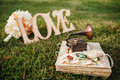 Rings with small gramophone on grass Royalty Free Stock Photo