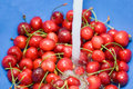Rinsing cherries Stock Images