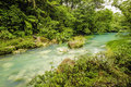 Rio celeste costa rica beautiful flows through the tenorio national park in Stock Photo