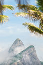Rio de janeiro two brothers dois irmaos mountain brazil with palm trees in front of misty view of Royalty Free Stock Image