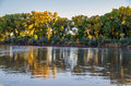 Rio grande in albuquerque the flows through the bosque the middle of the city the cottonwood trees are full autumn ccolor Royalty Free Stock Images