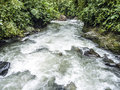 Rio mindo western ecuador river running through cloudforest at m elevation Stock Image