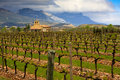 Rioja Winery Royalty Free Stock Photo