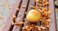 Ripe Apple And Autumn Leaves O...