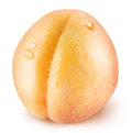 Ripe apricot fruit with water drops. Royalty Free Stock Photo