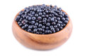 Ripe berries bilberries in plate on white background Stock Photos