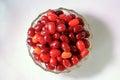 Ripe berries of dogwood red