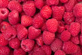 Ripe berry red raspberry closeup backdrop Stock Photography
