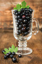 Ripe black currants in glass on wooden background Stock Images