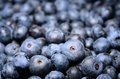 Ripe blueberries in the market background Royalty Free Stock Photos